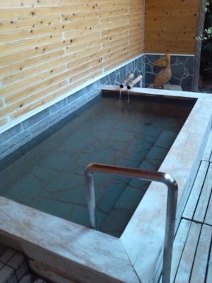 掛け流しの温泉で朝風呂