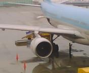 A330の翼の捩れ