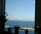 今日の富士山と今週のアラマキさん