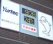 暑くなりそうだわさ